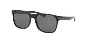 BV7033 901/81 POLARIZED